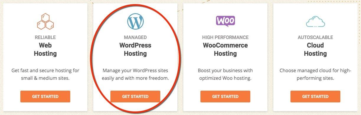 sg-hosting-options