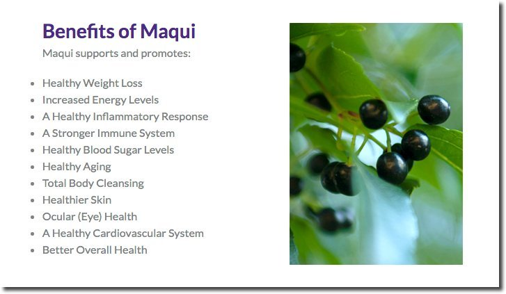 benefits-of-maqui